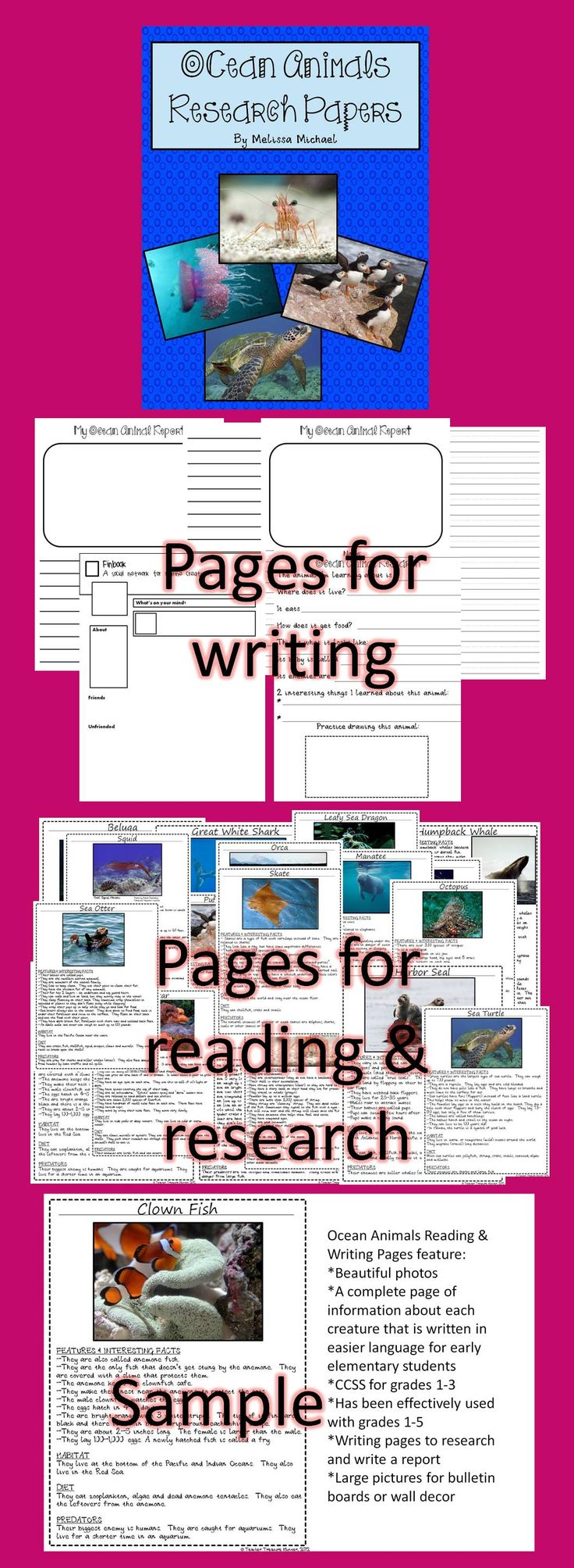 Ocean Animals Reading Writing Pages ELA CCSS 21 Creatures