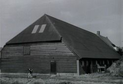 onduline golfplaten op versleten rieten dak; bedrijf Goense