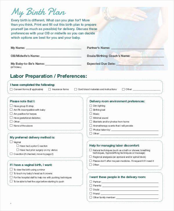 30 Printable Birthing Plan Template In 2020 Birth Plan