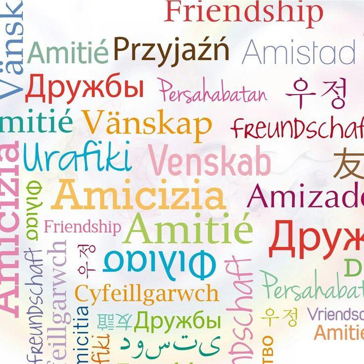 L'antidoto contro cinquanta nemici è un amico. (Aristotele) #amicizia #amicovero #vita  BUONANOTTE 😘