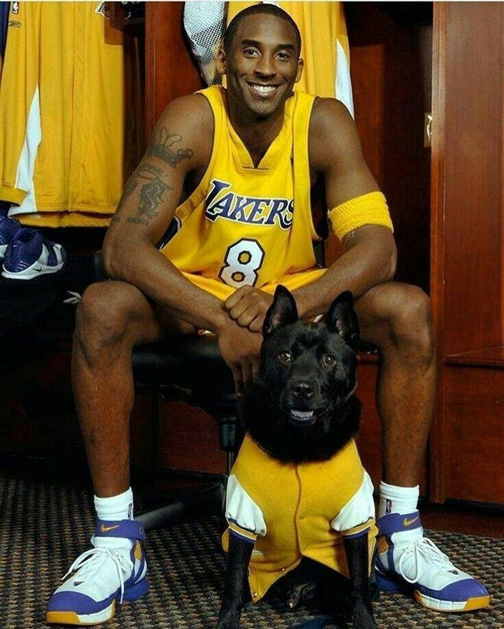 Kobe Bryant Legend Lakercrew Kobe Bryant Kobe Bryant Black Mamba Lakers Kobe Bryant