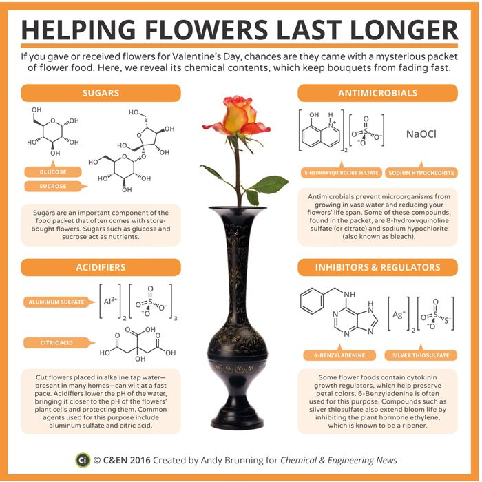 This is an infographic describing the chemistry of flower food.
