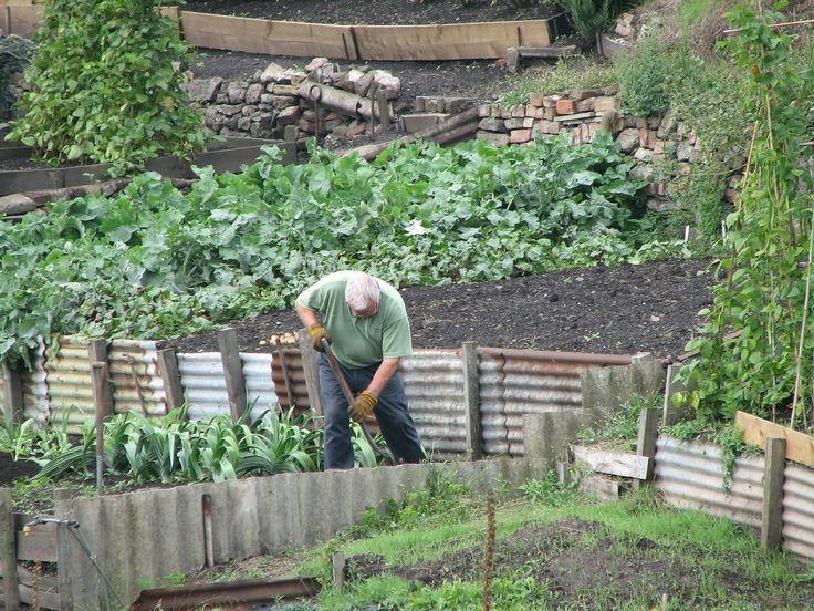 Briefs: Garden Starter holds grand opening today
