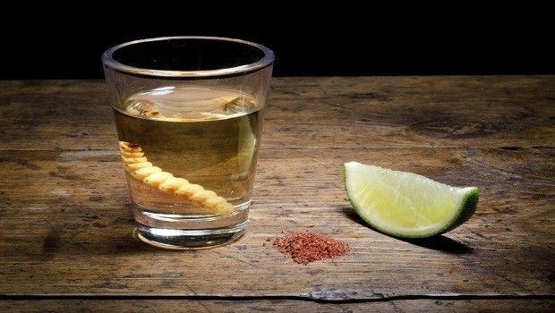 Pernod Ricard desarrollará marca de mezcal junto con pequeñas comunidades en México