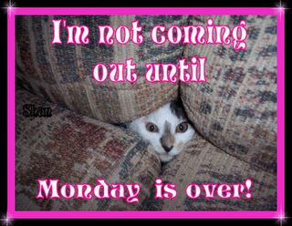 Monday Morning Humor | monday morning jokes happy monday monday morning blues monday morning ...