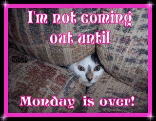 Monday Morning Humor   monday morning jokes happy monday monday morning blues monday morning ...