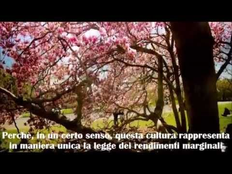 Alan Watts - Sulla cultura - YouTube