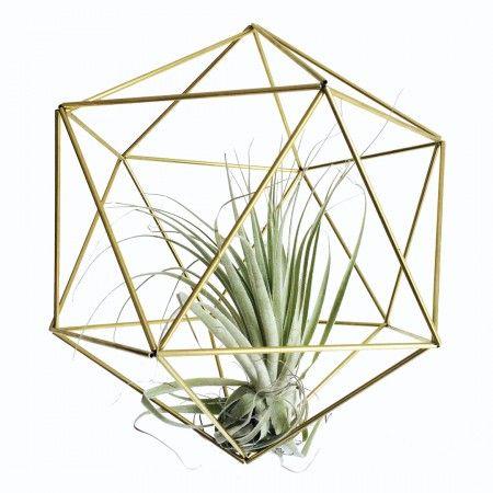 Mooi voor op tafel met een kaarsje erin of in de lucht met een plantje. Deze Orb mag je zelf in elkaar zetten! Sfeervol.