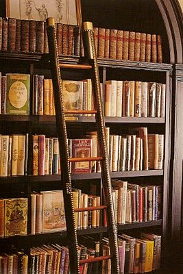 i want a library with a ladder someday...a whole room of books and a big plush chair and a nice wood desk.