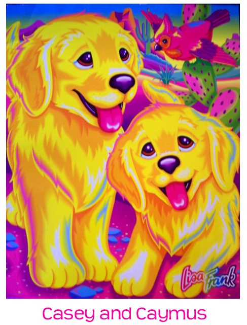 The Fantastic World Of Lisa Frank