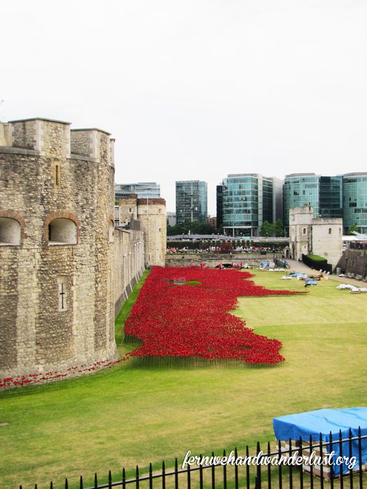 Blood Swept Lands and Seas of Red - Poppy installation at The Tower to commemorate Britain's involvement in WWI