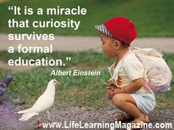 """""""When you teach a child something you take away forever his chance of discovering it for himself."""" ~ Jean Piaget"""