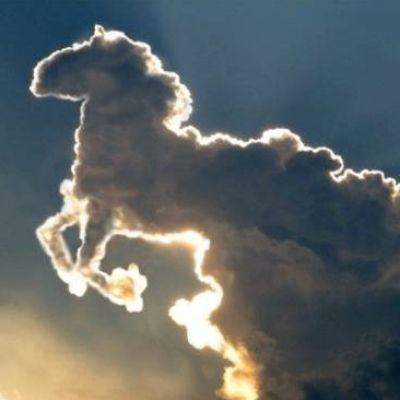 Amazing Nature: Clouds That Look like Animals ...
