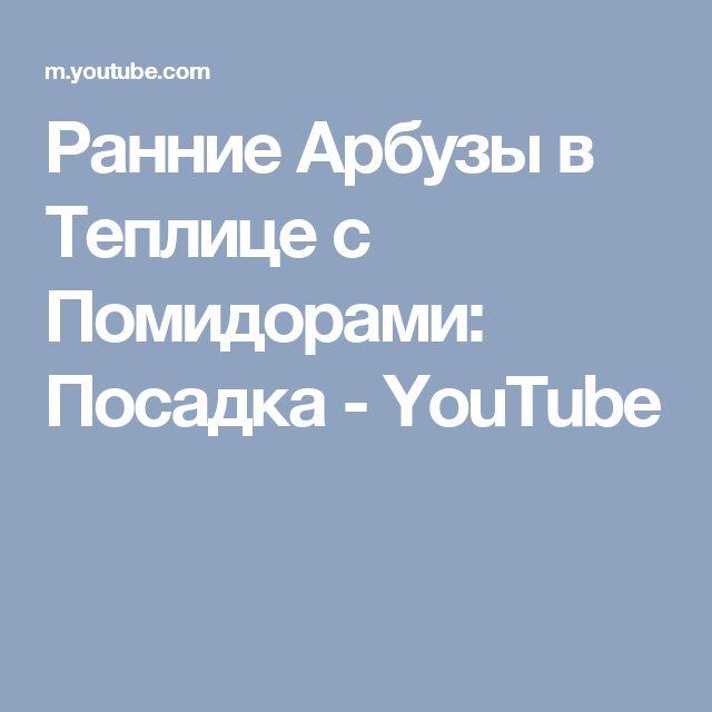 Ранние Арбузы в Теплице с Помидорами: Посадка - YouTube