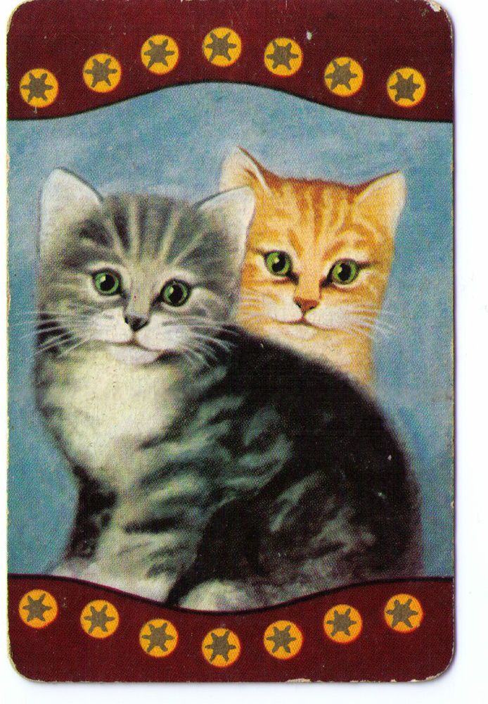SWAP / PLAYING CARDS COLES UN-NAMED SERIES - CATS - 2 TABBY KITTENS -STAR BORDER sold $46.00 1/2/16