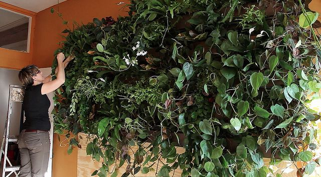 72 Best Images About Vertical Plant Wall Interior On 400 x 300