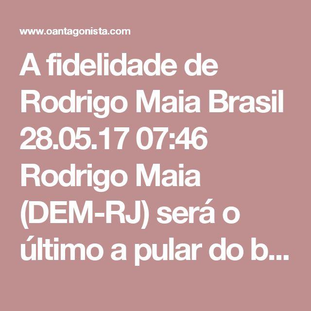 """A fidelidade de Rodrigo Maia  Brasil 28.05.17 07:46 Rodrigo Maia (DEM-RJ) será o último a pular do barco do governo de Michel Temer. Foi o que o presidente da Câmara, favorito para eventual eleição indireta, disse a aliados, segundo o Painel da Folha. Motivo: """"qualquer movimento precipitado afastaria o PMDB de sua órbita, reduzindo suas chances numa disputa conduzida pelo Congresso. Não quer repetir o que considera ter sido um erro do PSDB, hoje visto com desconfiança pelos aliados"""". Ou…"""