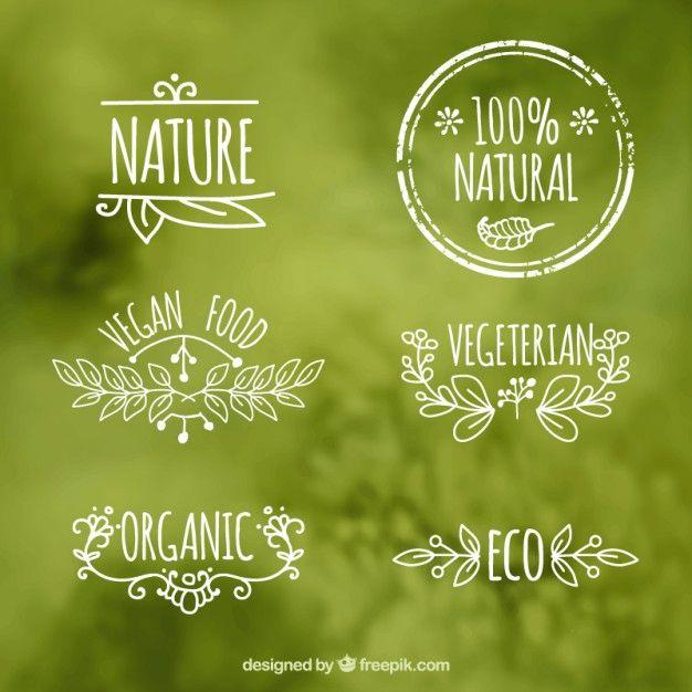 Etiquetas de alimentos ecológicos Vector Gratis