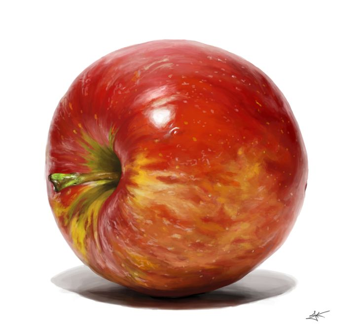 drawing, apple, digital painting, 사과 그려봄
