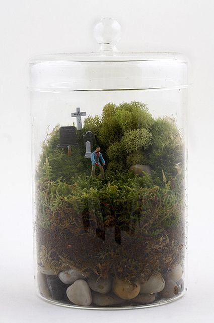 Zombie Terrarium for our wedding, we can keep in up in the house after.