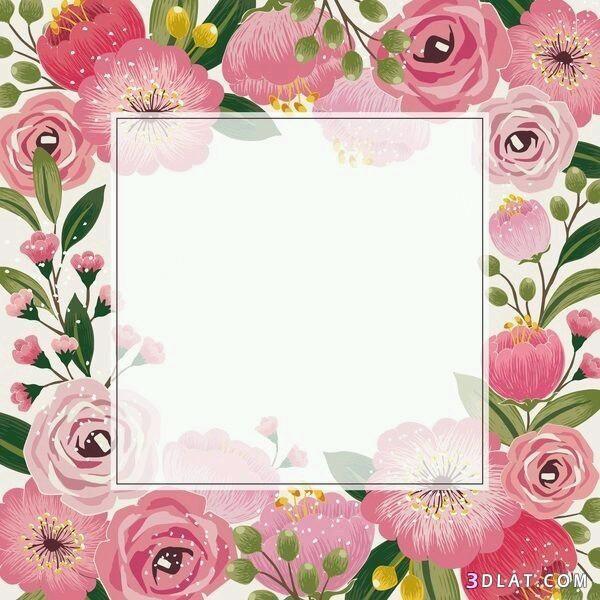 اطارات ورود فارغه للتصميم اجدد الاطارات والبراويز للكتابه عليها2019 Flower Frame Pink Wallpaper Iphone Floral Background