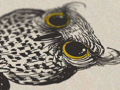 By Den Parukedonos: Everth Owl, Owl Illustrations, Illustration Patterns Collage, Owl Drawings, Owl Obsession, Owl Dennings, Dennings Parukedonos, Parukedono Follow, Owl 3