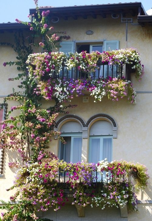 Window boxes - what beautiful balconies! Love how the flowers are on the upper rail and trailing down from the floor of the deck