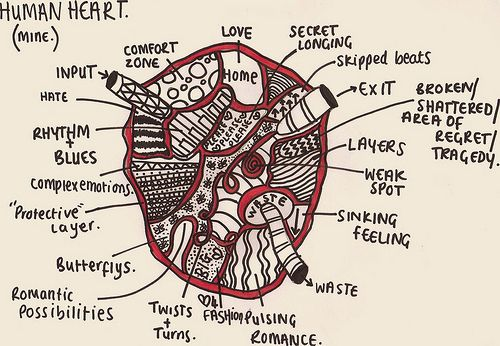 17 best ideas about human heart diagram on pinterest ... heart diagram project