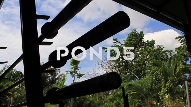 Silhouette Olympic Weight Lifting Barbells Trees and Clouds Time Lapse - Stock Footage | by RyanJonesFilms