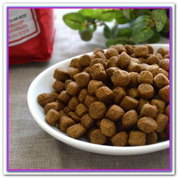 Best Large Breed Dog Food For Sensitive Stomachs 5 Best Foods