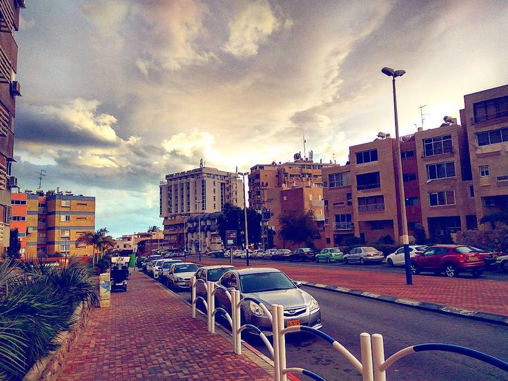 #Israel #Eilat #IsraelSouth #RedSea #Израиль #Flowers  #КрасноеМоре  #Эйлат #Hotel #Holidays #Sun #Солнце  #Юг #אילת  #Lake #Desert #Negev  #Негев #Palms #Пальмы #Południe #Palmy #Morze #Słońce #Nurkowania #Pustkowie #Freediving  #Diving  #Isrotel  #hotelisrael eilat-il.com    freediving.eilat-il.com