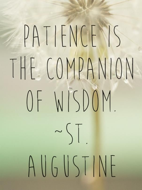 St Augustine Quote About Patience and Wisdom