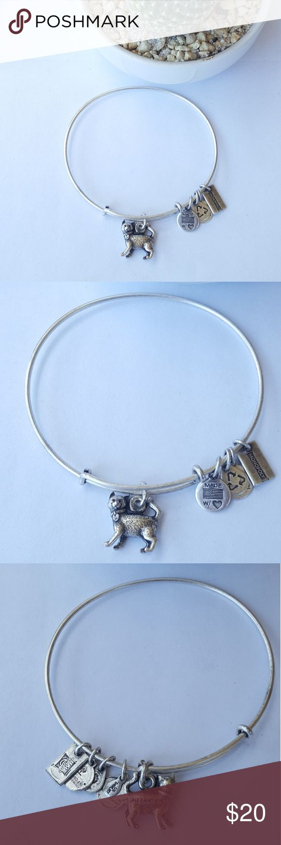 "Alex & Ani ""Monopoly Cat"" Bangle Silver Tone Alex & Ani ""Monopoly Cat"" Expandable Bangle Condition: Used. Some scuffs and the slightest discoloration Please view pics Alex & Ani Jewelry Bracelets"