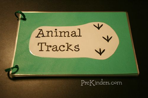 DIY Animal Tracks book with a link to the printables.