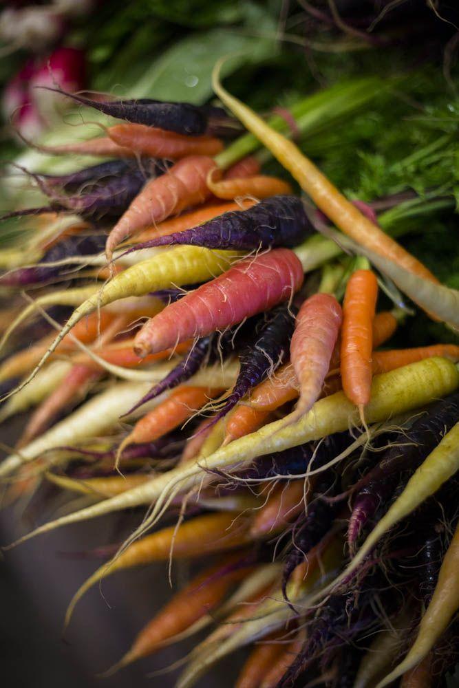 Wine Food Farmgate Trail. Heirloom Carrots Mornington Peninsula.