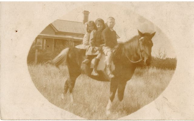 This postcard was sent to my Grandmother by the Vaughan family of Learmonth, Victoria. It shows Mollie and Alison Vaughan on a horse with Jeff Courtney.