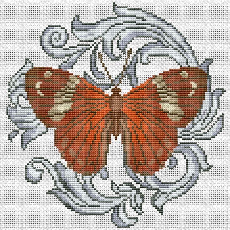 Gallery.ru / Harlequin Metalmark - Бабочки - Norsvet