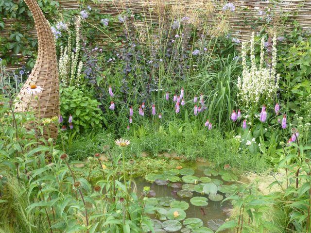 http://blog.theenduringgardener.com/wp-content/uploads/2010/07/garden-pond.jpg