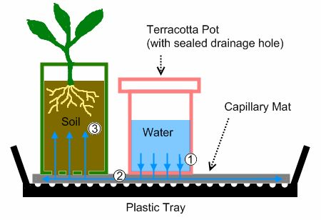 Self Watering Tray Schematic