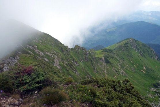 Стартовали в Квасах, дошли по Черногорскому хребту до Поп Ивана Мараморосы Закарпатье Карпаты