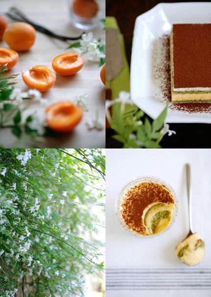 Photo by Keiko Oikawa.  Again, for the color and feel.  Greens, browns, whites, and egg yolk?