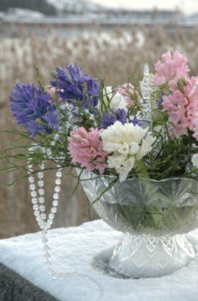 http://puutarha.net/artikkelit/8685/joulukukat_kukoistavat_myos.htm