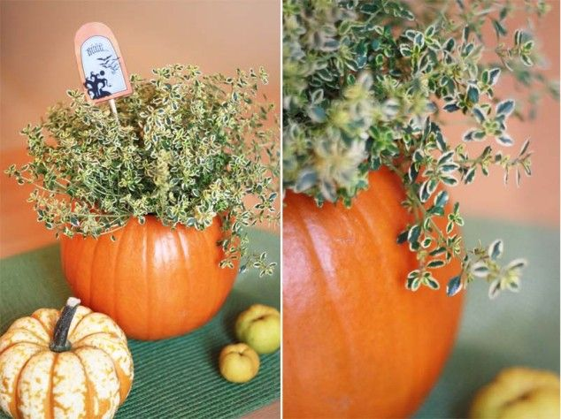 Moliūgas - Helovino dekoracijos idėja Pumpkin decor, Halloween - DIY