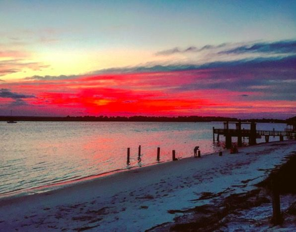 1000 images about tybee island beach on pinterest this for Tybee island fishing pier