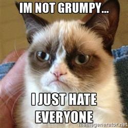Grumpy Cat  - Make your own Memes with memegenerator.net