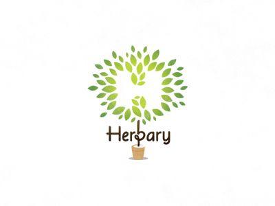 Herbarylogoancitisdribbble