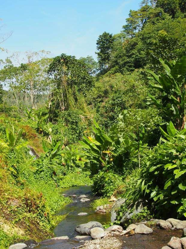 valley bali camping north waterfall magical secret travels