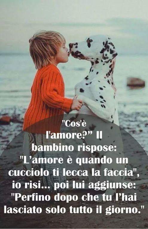 #amore #motivazionale #love #frasi #frasinellefoto #frasisullamore