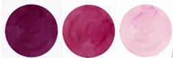 Sangria Color Palette - Mauve , Sangria/Wine , Dusty Rose Pink