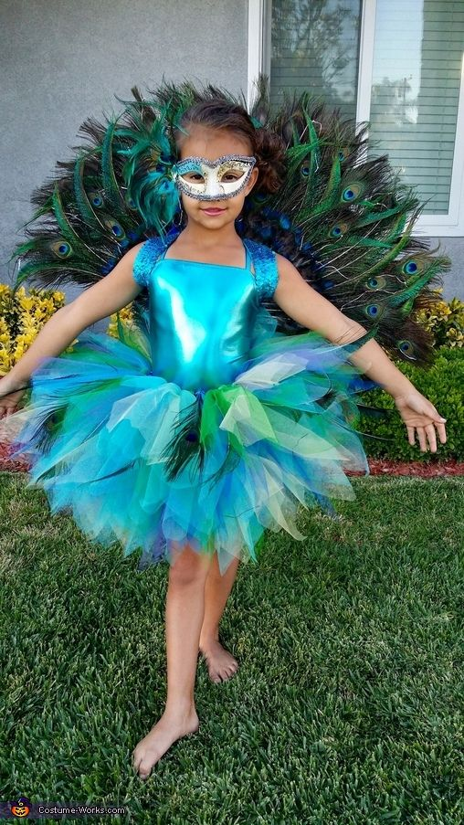 Homemade Peacock Costume - 2016 Halloween Costume Contest